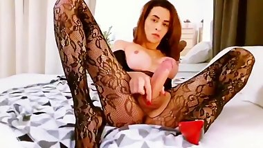 Hot Shemale Showing Her Rock Hard Tasty Uncut Cock